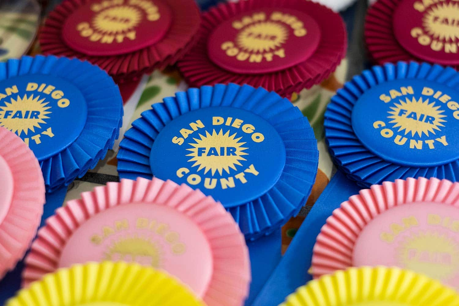 Competitive Exhibits   San Diego County Fair